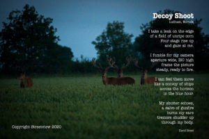 Decoy Shoot Poem